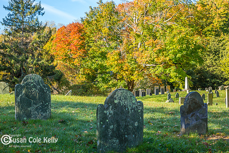 Fall foliage in Sandwich, Cape Cod, Massachusetts, USA