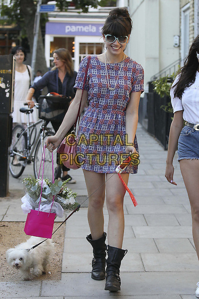 Daisy Lowe in Primrose Hill, London, England..28th September 2011.full length black boots purple blue dress sunglasses shades print top hair up walking dog lead leash bag purse flowers bouquet .CAP/HIL.©John Hillcoat/Capital Pictures.