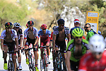 Riders including World Champion Peter Sagan (SVK) Bora-Hansgrohe climb Sierra de la Alfaguara during Stage 4 of the La Vuelta 2018, running 162km from Velez-Malaga to Alfacar, Sierra de la Alfaguara, Andalucia, Spain. 28th August 2018.<br /> Picture: Eoin Clarke   Cyclefile<br /> <br /> <br /> All photos usage must carry mandatory copyright credit (&copy; Cyclefile   Eoin Clarke)