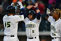 Left fielder Tim Tebow (15) of the Columbia Fireflies is congratulated by Blake Tiberi (5) and Milton Ramos (24) after hitting a home run in his first Class A at bat in a game against the Augusta GreenJackets on Opening Day, Thursday, April 6, 2017, at Spirit Communications Park in Columbia, South Carolina. (Tom Priddy/Four Seam Images)