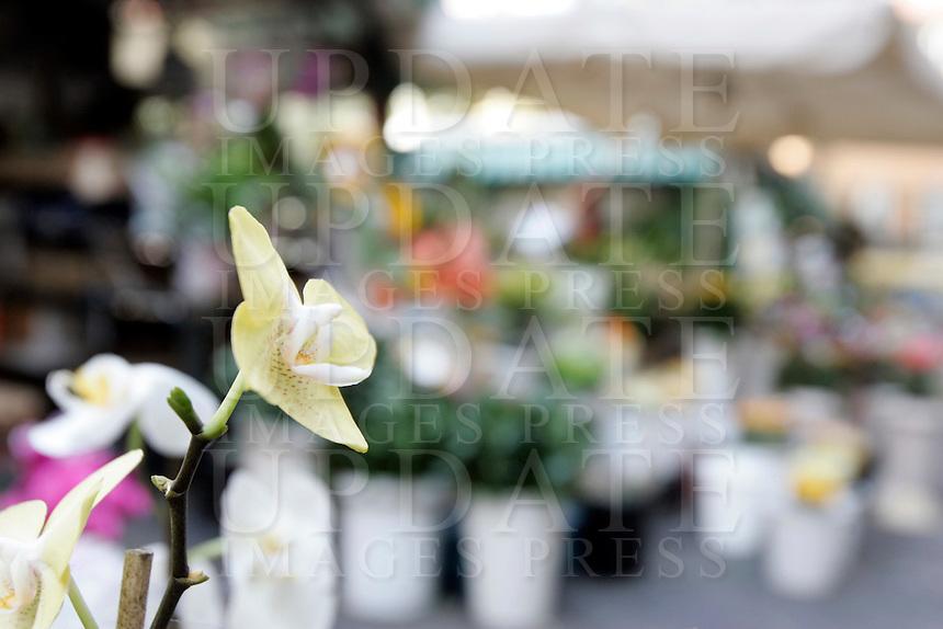 Fiori in vendita a Sanremo.<br /> Flowers for sale in Sanremo.<br /> UPDATE IMAGES PRESS/Riccardo De Luca
