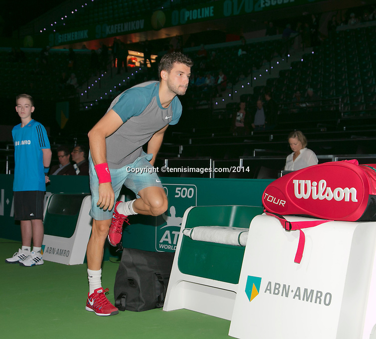 13-02-14, Netherlands,Rotterdam,Ahoy, ABNAMROWTT, Grigor Dimitrov(BUL)<br /> Photo:Tennisimages/Henk Koster
