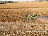 63801-08405 Corn Harvest, John Deere combine harvesting corn - aerial Marion Co. IL