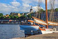 Skonaren Vega tillagd vid kajen på Skeppsbron i Stockholm.
