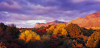 Sunrise on El Capitan and fall colors, Guadalupe Mountains National Park, Texas, USA