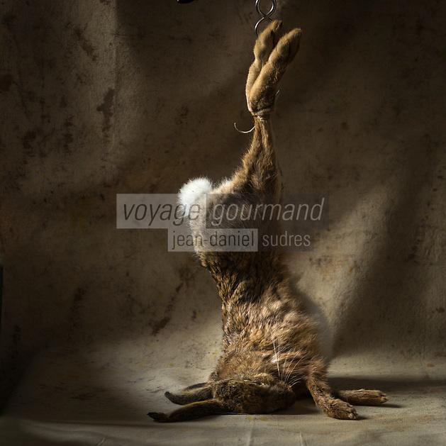 Gastronomie: Li&egrave;vre // Gastronomy: Hare <br /> - Stylisme : Val&eacute;rie LHOMME
