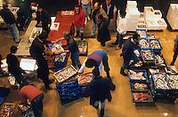Europe/France/Provence-Alpes-Côte d'Azur/13/Bouches-du-Rhône/Marseille : Le marché de gros aux poissons au porty de Saumaty