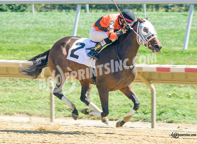 Empress Hatshepsut winning at Delaware Park on 9/14/15