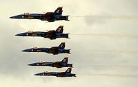Blue angels performance at Elmendorf Air Force Base, Alaska.