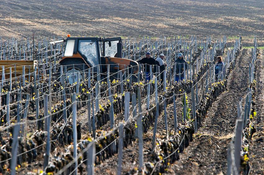 tractor in the vineyard clos des quatre vents margaux medoc bordeaux france