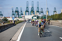 Peloton with the Port of Antwerp in the background<br /> <br /> Antwerp Port Epic 2020 <br /> One Day Race: Antwerp to Antwerp 183km; of which 28km are cobbles and 35km is gravel/off-road<br /> Bingoal Cycling Cup 2020