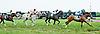 Gallivanting winning at Delaware Park on 8/26/2013