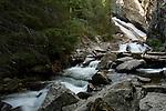 Washington Idaho Border, North, Priest Lake, Nordman. Granite Creek, flows over Lower Granite Falls in the Roosevelt grove of ancient cedars. Kaniksu National Forest.