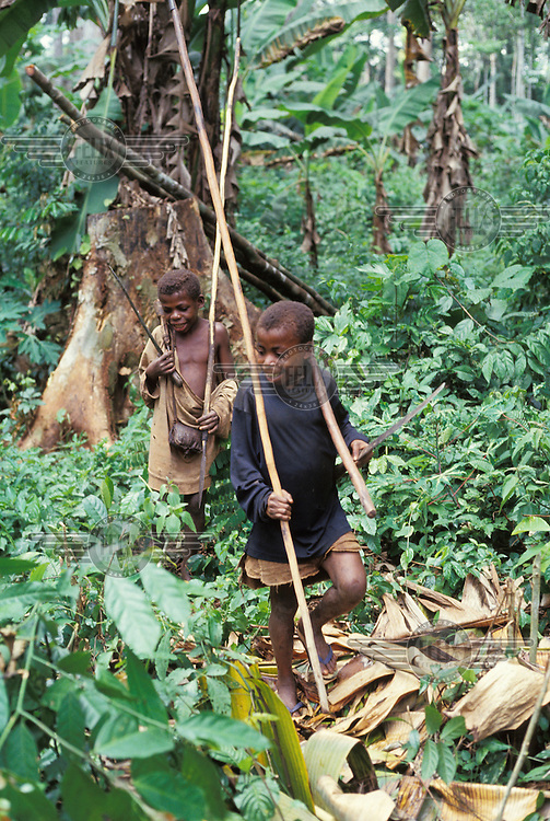 Mbuti (pygmy) children hunting in the forest.