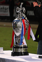 The Glasgow Cup bedecked in red, white and blue ribbons after the Celtic v Rangers City of Glasgow Cup Final match played at Firhill Stadium, Glasgow on 29.4.13,  organised by the Glasgow Football Association and sponsored by City Refrigeration Holdings Ltd.