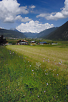 Recently cut hay fields against the background of village and mountains, Imst district, Tyrol/Tirol, Austria, Alps.