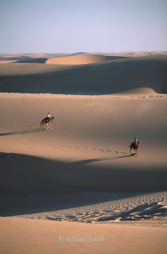 Explorer Benedict Allen and his guide  Tommy crossing  sand dunes on camel in the Namib Naukluft desert.  Access is restricted due to Diamond mining activity by DeBeers.