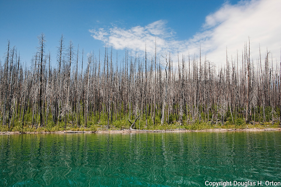 In 2003, forest fires ravaged Glacier National Park.  Lake McDonald, gem of Glacier National Park in the U.S. State of Montana, at ten miles long and over a mile wide is the largest lake in the park.