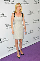 Emily VanCamp at the Disney Media Networks International Upfronts at Walt Disney Studios on May 20, 2012 in Burbank, California. ©mpi35/MediaPunch Inc.