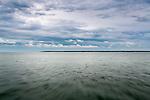 Seen from the ferry, Martha's Vineyard Sound, Massachusetts, USA