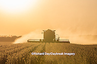 63801-07108 Farmer harvesting soybeans at sunset, Marion Co., IL