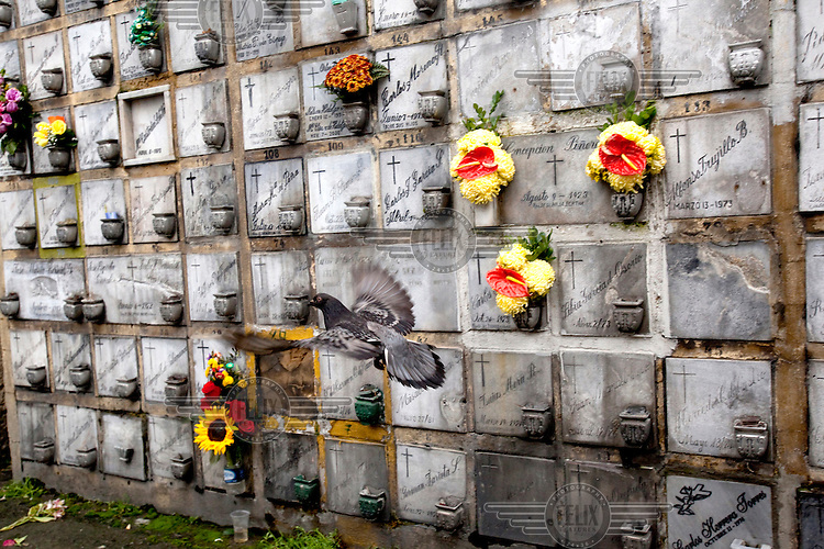 Flowers left on cremation urn memorials in the cemetery at 26th Street in Bogota.