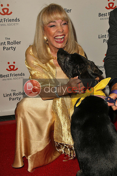 Terry Moore<br />