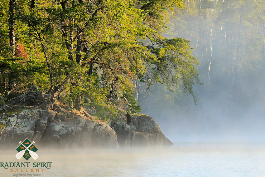 &quot;Jack Pine Unveiling&quot;<br />