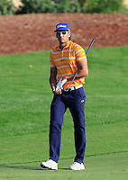 Rafa Cabrera-Bello (ESP) on the 18th fairway during the Pro-Am for the DP World Tour Championship at the Jumeirah Golf Estates in Dubai, UAE on Monday 16/11/15.<br /> Picture: Golffile | Thos Caffrey<br /> <br /> All photo usage must carry mandatory copyright credit (© Golffile | Thos Caffrey)