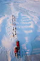 Aliy Zirkle's team casts long shadows as the sun sets on the Unalakleet slough in 20 mph wind and sub-zero temperatures after leaving check-in point at Unalakleet during the 2010 Iditarod