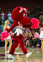 LSU Tigers vs Arkansas Razorbacks –Bud Walton Arena, University of Arkansas,  Fayetteville, AR, on Sunday, February 18,2018.  Special to NWA Democrat-Gazette David Beach