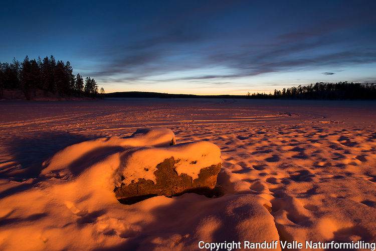 Omgivelsene lyses opp av et stort bål ved Ellentjernet i Pasvik. ---- Large fire sends light onto surroundings.