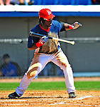 10 March 2009: Washington Nationals outfielder Lastings Milledge at bat during a Spring Training game against the New York Mets at Space Coast Stadium in Viera, Florida. The Nationals and Mets tied 5-5 in the 10-inning Grapefruit League matchup. Mandatory Photo Credit: Ed Wolfstein Photo
