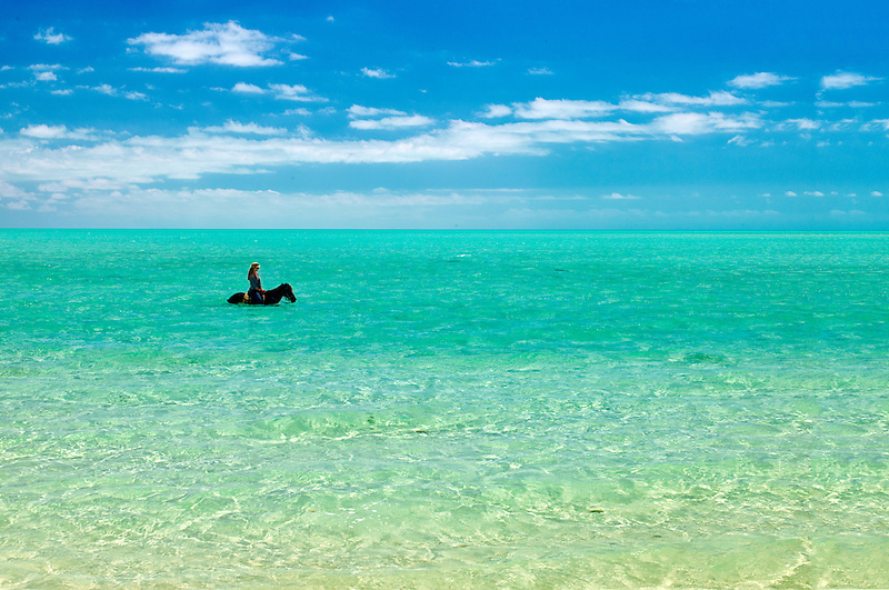 Horse riders in water. Providenciales. Turks and Caicos.
