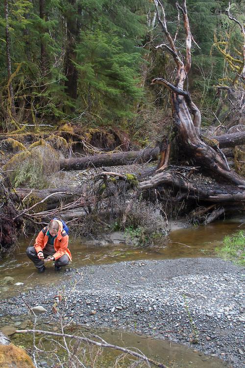 Hoh River, Hoh River Trust, The Nature Conservancy, TNC, Emily Howe, Marine Biologist, assessing river habitat, Noland Creek, spring, 2017 Olympic Peninsula, Washington State, Pacific Northwest, USA,