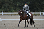 Class 3. Unaffiliated dressage. Brook Farm Training Centre. Essex. UK. 06/10/2018. ~ MANDATORY Credit Garry Bowden/Sportinpictures - NO UNAUTHORISED USE - 07837 394578