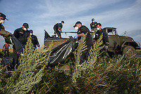 Ukrainian rescue team workers load bodies of passengers onto trucks at the crash site of flight MH17, Malaysian Airlines Boeing 777, Hrabove, Eastern Ukraine.