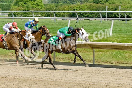 Brief Mark winning at Delaware Park on 6/27/09