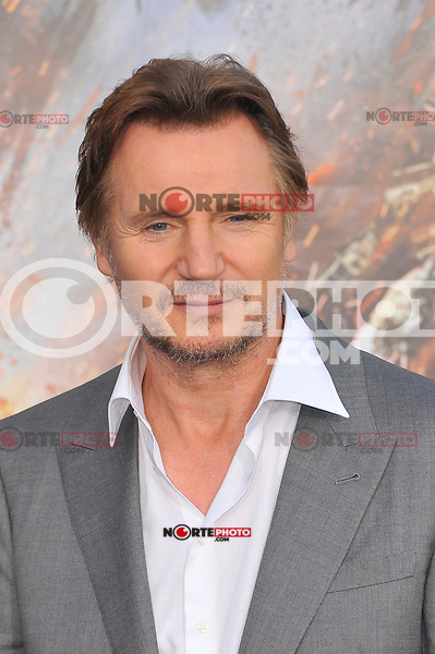 Liam Neeson at the film premiere of 'Battleship,' at the NOKIA Theatre at L.A. LIVE in Los Angeles, California. May, 10, 2012. ©mpi35/MediaPunch Inc.