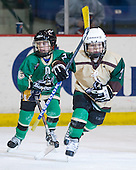 The Haverhill Pentucket Thunder mites skated between the first and second periods. - The visiting Northeastern University Huskies defeated the University of Massachusetts-Lowell River Hawks 3-2 with 14 seconds remaining in overtime on Friday, February 11, 2011, at Tsongas Arena in Lowelll, Massachusetts.