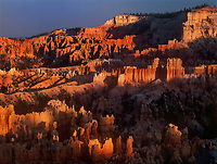 730750038 sunset light turns the hoodoos in the silent city brilliant red and yellow seen from sunset point in bryce canyon national park utah
