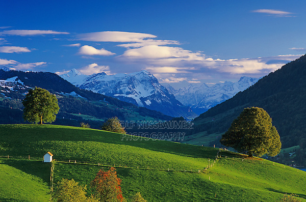 Farmland and Swiss Alps, Oberaegeri, Switzerland, Europe