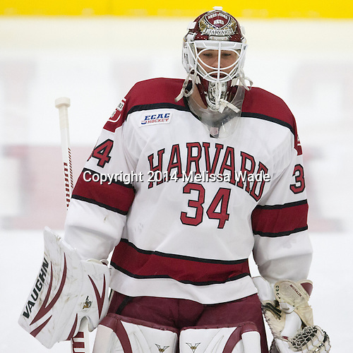Steve Michalek (Harvard - 34) - The Harvard University Crimson tied the visiting Dartmouth College Big Green 3-3 in both team's first game of the season on Saturday, November 1, 2014, at Bright-Landry Hockey Center in Cambridge, Massachusetts.