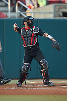 Louisville Cardinals catcher Colby Fitch (42) throws the ball back to his pitcher during the game against the North Carolina State Wolfpack at Doak Field at Dail Park on March 24, 2017 in Raleigh, North Carolina. The Wolfpack defeated the Cardinals 3-1. (Brian Westerholt/Four Seam Images)