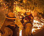 Cal Fire firefighter create backfire to stop fire coming out of the Tuolumne River Canyon on Highway 120 Near Yosemite National Park. The Rim Fire jumped Highway 120 in several places including Packard Canyon Road.