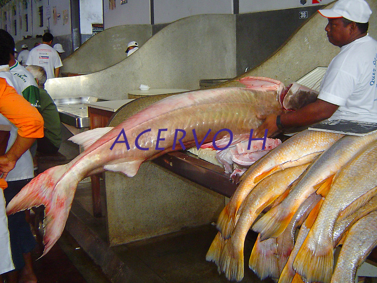 Piraíba ou filhote, <br /> Mercado do Ver-o-Peso<br /> Belém; Pará; Brasil.<br /> Foto Eric Stoner