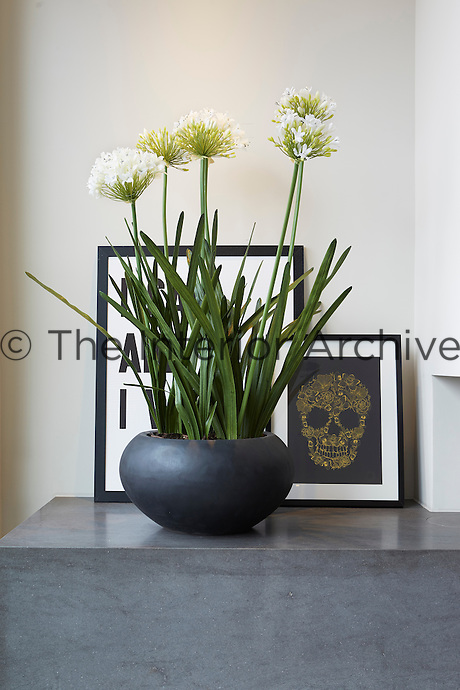 A pot of agapanthus flowers stands on the slate hearth of the fireplace.