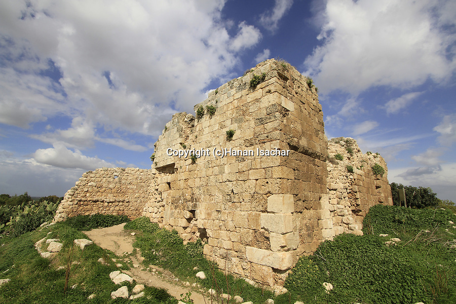 Israel, Sharon region, Kakun National Park, site of the Crusader Caco fortress