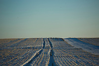 Snow covers farm fields outside Ledger, Montana, USA.