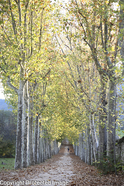 Jardin del Principe Park in Autumn, San Lorenzo de El Escorial, Madrid, Spain
